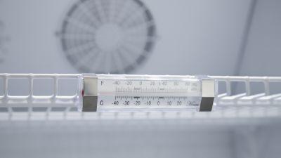 Dettaglio Vetrina Refrigerata Per Bibite 350 Litri Chefline 5